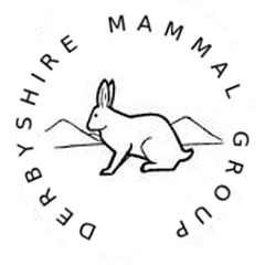 DMG logo mountain hare